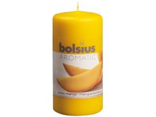 """Κερί Αρωματικός Κορμός """"Bolsius"""""""