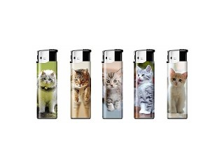 Electronic Lighter Small with Kittens